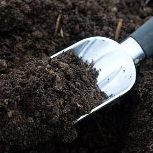 Bahçe toprağı bodrum